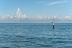 Młody człowiek dalej stoi up paddle deskę, zatoka meksykańska, Floryda, usa Obrazy Royalty Free