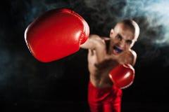 Młody człowiek kickboxing na czerni z kapą w usta Obraz Royalty Free
