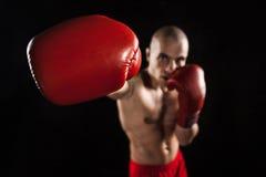 Młody człowiek kickboxing na czerni z kapą w usta Obraz Stock