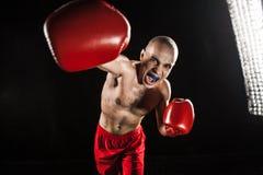 Młody człowiek kickboxing na czerni z kapą w usta Zdjęcia Royalty Free