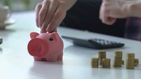 Młody człowiek liczy rodzinnego budżet, stawia pieniądze w prosiątko banka, zamyka up zdjęcie wideo