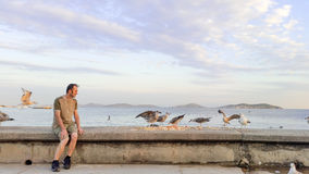 Młody Człowiek Ogląda Seagulls Fotografia Stock