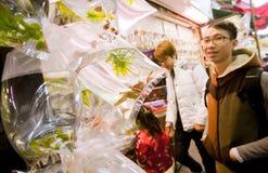 Młody człowiek patrzeje dla kraby w małych plastikowych workach fotografia royalty free