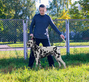 Młody człowiek pokazuje Dalmatyńskiego psa Obraz Stock