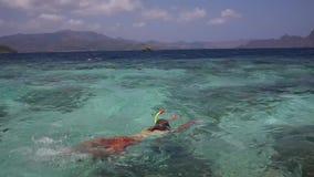 Młody człowiek snorkeling w jasnym płytkim tropikalnym morzu zdjęcie wideo