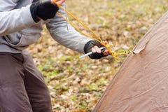 Młody człowiek stawia namiot w drewnach a Zdjęcie Stock