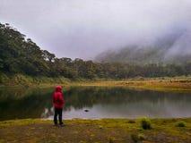 Młody człowiek stoi blisko halnego jeziora obraz royalty free
