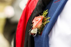młody człowiek w kostiumu w jego kieszeni czerwieni róży Zakończenie tam tonuje obraz royalty free