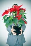 Młody człowiek w kostiumu z poinseci rośliną zdjęcia royalty free