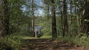 Młody człowiek wynika las jezioro i podziwia widok Młody człowiek iść brzeg lasowy jezioro zdjęcie wideo