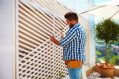 Młody dorosły mężczyzna dekoruje domową ścianę, utworzeniem drewniany trellis dla wspinać się zasadza Fotografia Stock