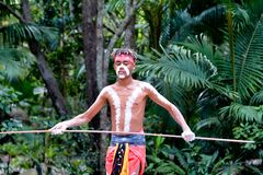 Młody Dorosły Miejscowy australijczyk Mężczyzna Trzyma dzidę obrazy royalty free