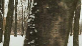 Młody facet w czerń sportach odziewa i Balaclava, wykonuje rozgrzewkę przed trenować w zimy śnieżystym mieście zbiory wideo
