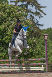 Młody horsewoman w czerni na białym koniu Zdjęcia Stock