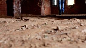 Młody inspektor egzamininuje starego budynek, zakończenie, nogi, antyczna struktura, historyk zbiory wideo