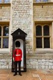 Młody irlandczyka strażnik przy wierza Londyn obrazy royalty free