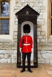 Młody irlandczyka strażnik przy wierza Londyn obrazy stock