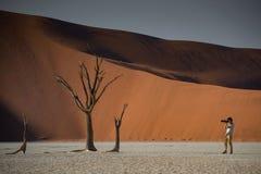 Młody męski fotograf bierze fotografię nieżywy drzewo w deadvlei Fotografia Stock
