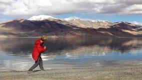 Młody nastoletni kamień omija na Tso Moriri jeziorze z halnym tłem, Ladakh, India zbiory wideo