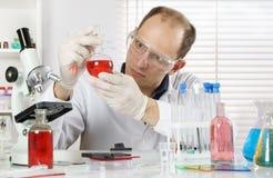 Młody naukowiec dyrygentury badanie w laboratorium fotografia stock