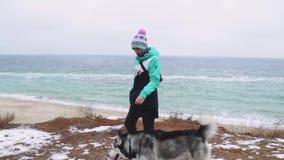 Młody piękny żeński odprowadzenie z siberian husky psem na plaży przy zima dniem, zwolnione tempo zdjęcie wideo