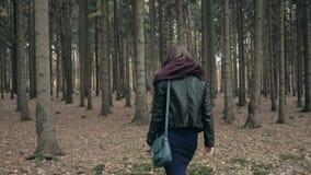 Młody piękny kobiety odprowadzenie w jesień parku Dziewczyny odprowadzenie W lesie W spadku, stylu życia pojęcie zbiory