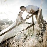 Młody przystojny bridal pary całowanie przez długiej trawy Obraz Royalty Free