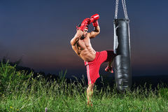 Młody przystojny męski bokser ćwiczy na uderza pięścią torbie outdoors Zdjęcie Royalty Free