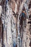 Młody Rockowego arywisty ściany prowadzenia wstępujący stromy kolorowy skalisty pięcie zdjęcie stock