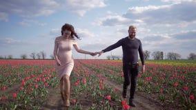 Młody rodzinny czekać na dziecko wpólnie trzyma w brzuchu wręcza odprowadzenie na kwiat łące różowi tulipany przeciw niebieskiemu zbiory wideo