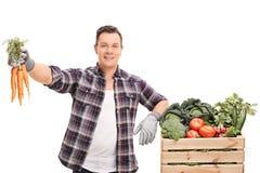 Młody rolnik trzyma wiązkę marchewki zdjęcia royalty free