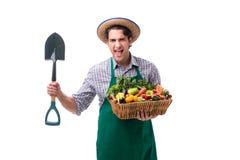 Młody rolnik z świeżym produkt spożywczy odizolowywającym na białym tle obrazy royalty free