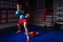 Młody sporty męski bokser w bokserskich rękawiczkach wzrasta i przygotowywa dla Zdjęcia Royalty Free