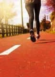 Młody sprawności fizycznej kobiety biegacza atlety bieg przy drogą Fotografia Royalty Free