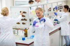 Młody szczęśliwy chemiczny technik nalewa fluid w chemicznej kolbie fotografia stock