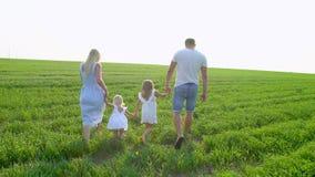 Młody szczęśliwy rodzina składająca się z czterech osób iść na zielonym polu z dwa dziećmi Rodzina z childs, dzieciaki chodzi na  zbiory