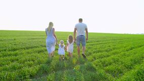 Młody szczęśliwy rodzina składająca się z czterech osób iść na zielonym polu z dwa dziećmi Rodzina z childs, dzieciaki chodzi na  zbiory wideo