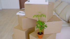 Młody szczęśliwy rodzinny chodzenie nowy mieszkanie Widok mieszkanie, pudełka i schodki nowi, Pojęcie parapetówa i zbiory