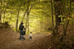 Młody tata i mała dziewczynka chodzi wpólnie w drewnach wewnątrz obrazy stock