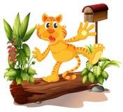 Młody tygrys przy ogródem z skrzynką pocztowa ilustracji