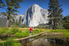 Młody wycieczkowicza równoważenie na drzewie przed El Capitan, Yosemite Obrazy Stock