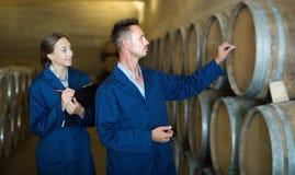 Młody wytwórnia win ekspert bierze notatki w dużym wytwórnia win lochu Obrazy Royalty Free