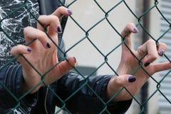 Młodych dziewczyn ręki przez zielonej stali sieci Obraz Royalty Free
