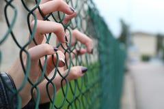 Młodych dziewczyn ręki przez zielonej stali sieci Obrazy Stock