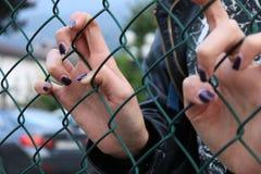 Młodych dziewczyn ręki przez zielonej stali sieci Zdjęcia Stock