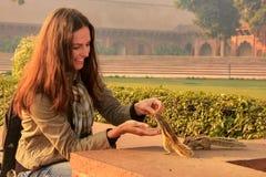 Młodych kobiet żywieniowe Indiańskie palmowe wiewiórki przy Agra fortem, Uttar Pr Fotografia Stock