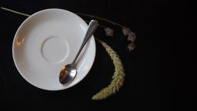 Młodych Kobiet fertania Bierze filiżankę soi Cappuccino kawa Zdrowa Organicznie weganin diety napojów zawartość 4K zbiory