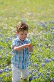 Młodzi berbeć chłopiec zrywania kwiaty obrazy stock