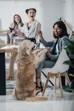 Młodzi bizneswomany bawić się z psem podczas gdy pracujący w biurze fotografia stock