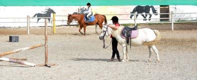Młodzi Końscy jeźdzowie Obraz Royalty Free